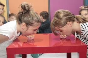 Petreceri copii 11-12 ani - Fit Fun Kids petreceri-copii-11-12-ani-1548923514799835248.jpg